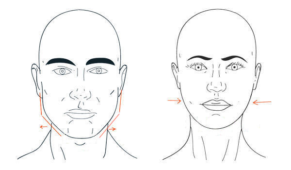 Difference between male and female cheekbones